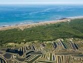 Perfectly seasoned tours in Guérande and Noirmoutier