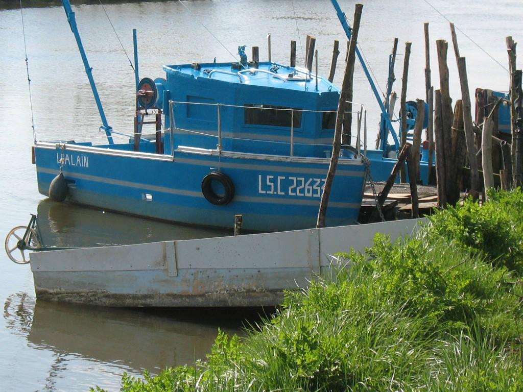 Couleur De Pierre Chalonnes Sur Loire port de moricq: nature france, atlantic loire valley