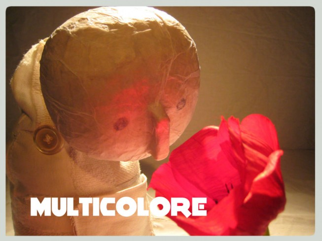 SPECTACLE MULTICOLORE