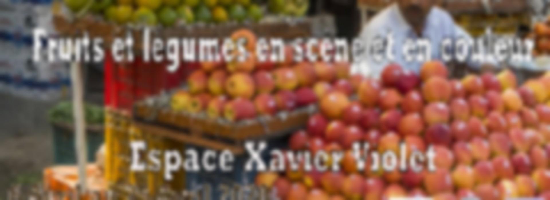 Couleur De Pierre Chalonnes Sur Loire exposition photos fruits et legumes en scene et en couleur