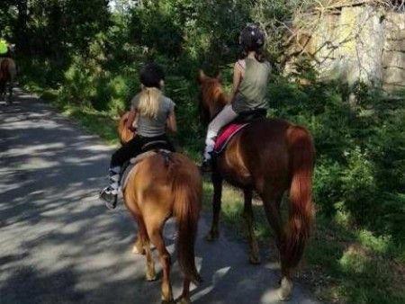 PONEY CLUB DE LA VIE