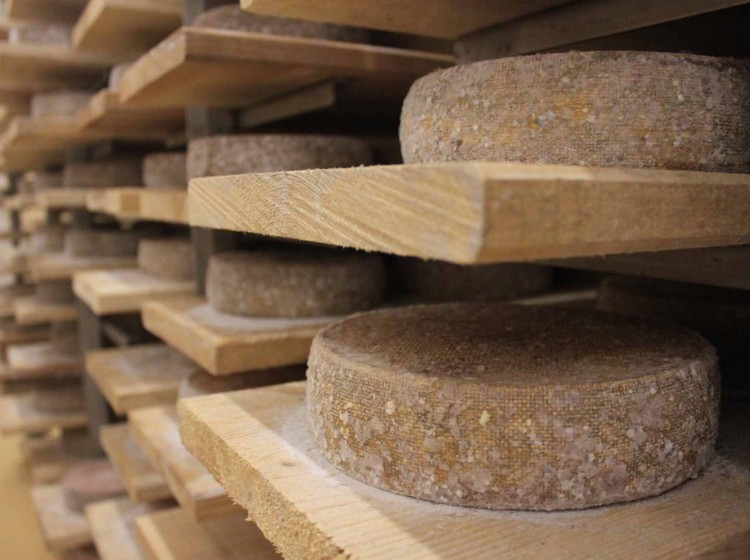 Fromagerie bio - Entrammes