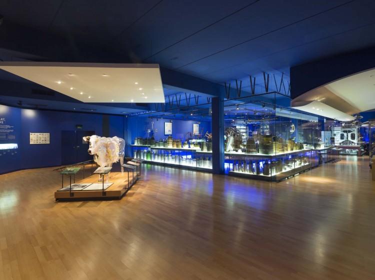 Lactopôle, museum of milk Must visits Laval France