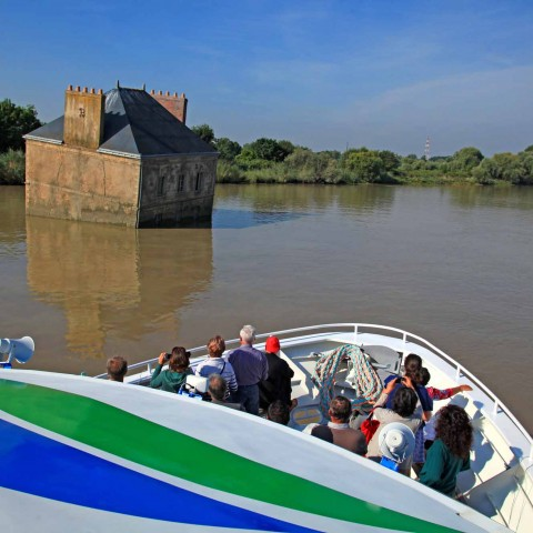 Explore the Loire estuary!