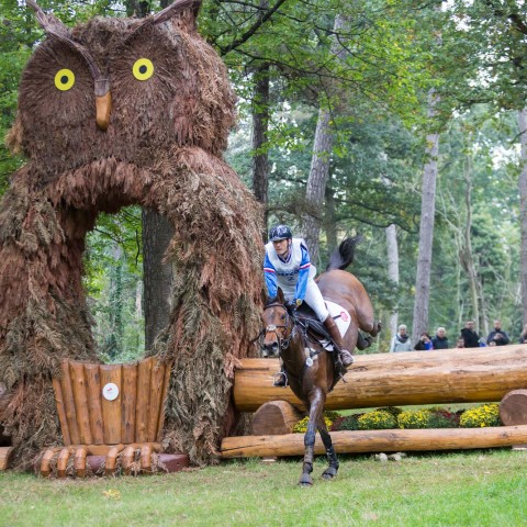 Watch incredible equestrian events!