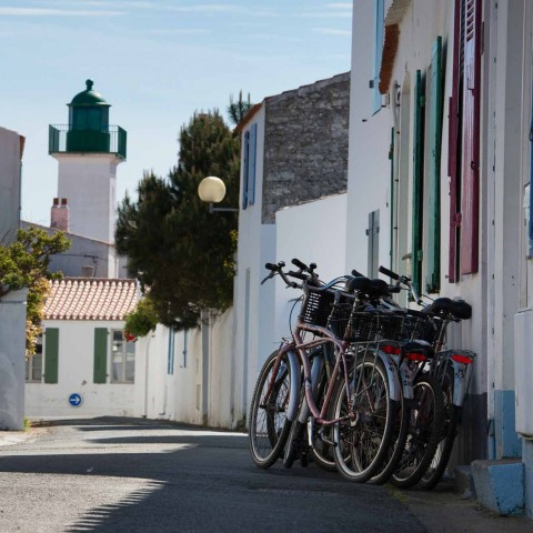 Explore the islands by bike!