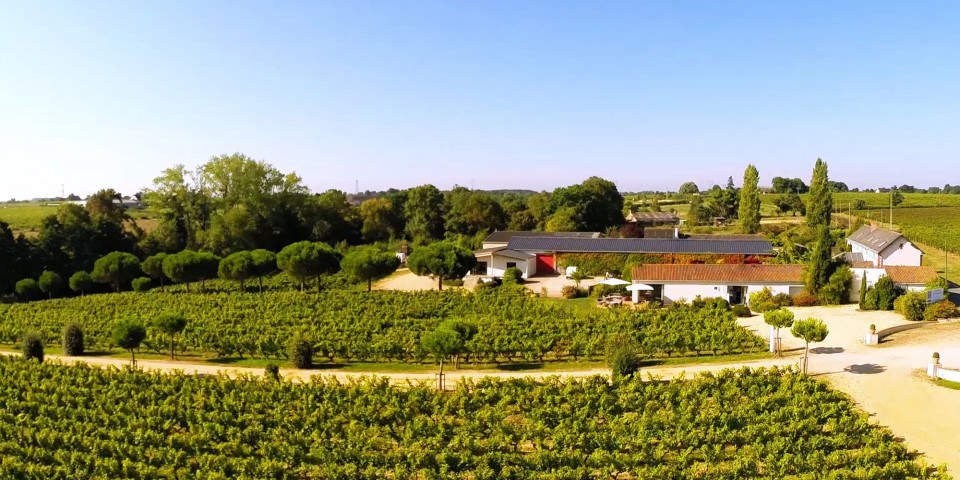 Eat among the vines at La Table de la Bergerie!