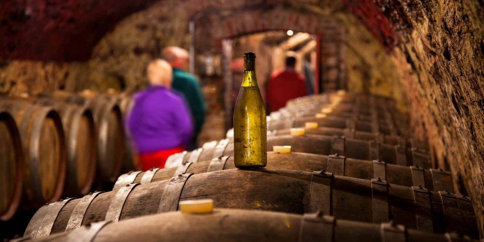 Explore the Loir Valley and discover its fruity white wines